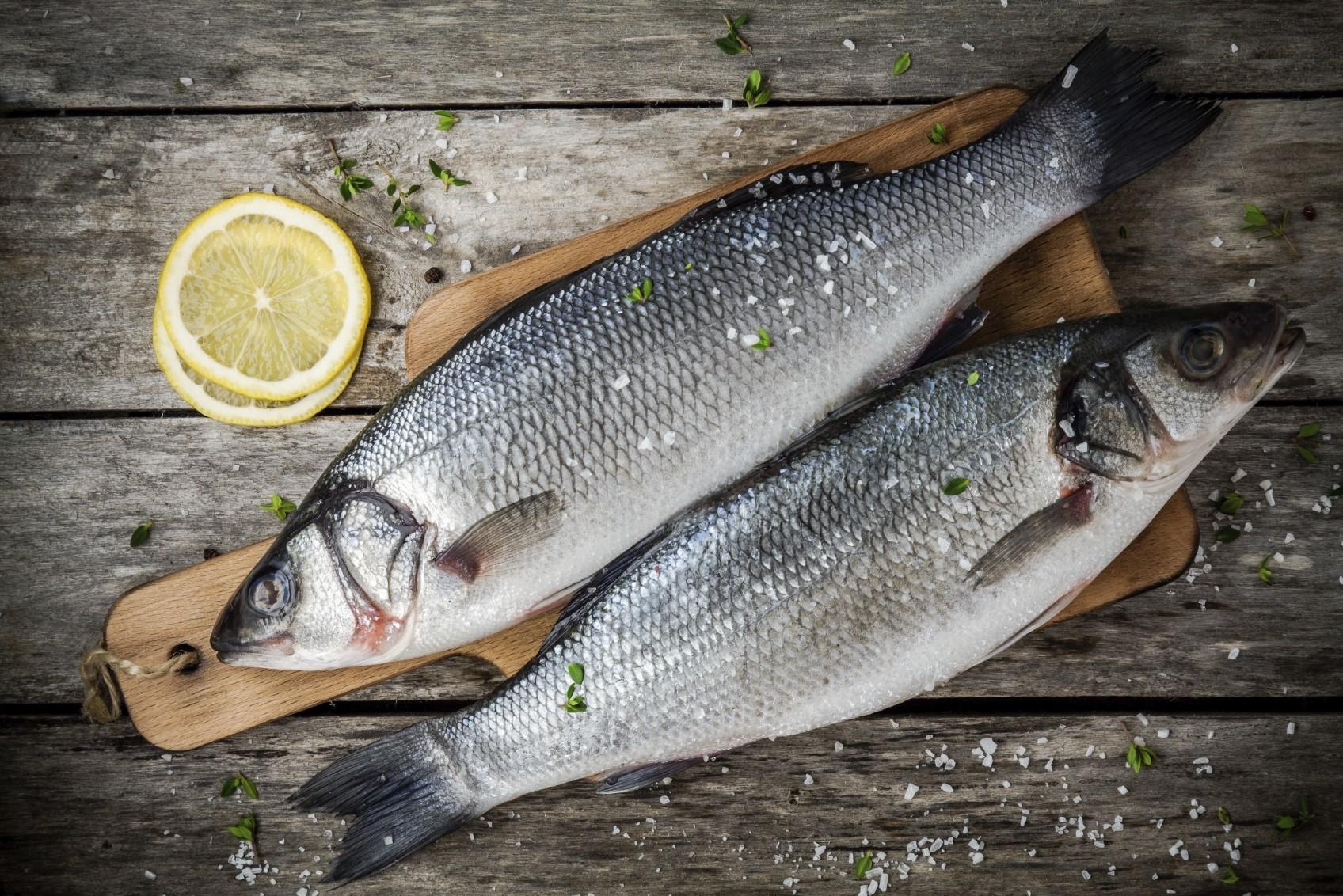 Branzino o spigola un pesce spazzino for Un pesce allevato in acque stagnanti